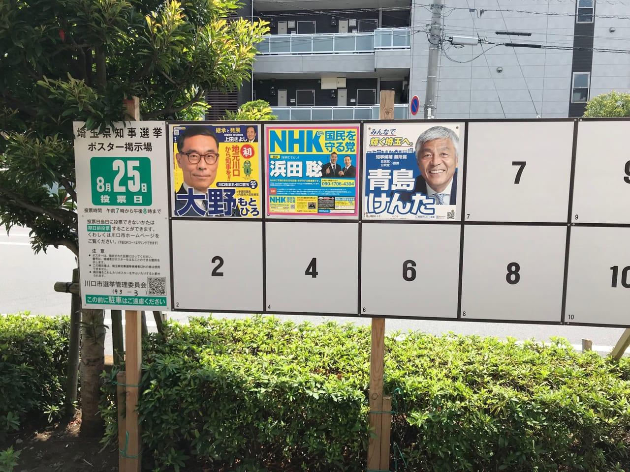 埼玉 県 知事 選挙 候補 者