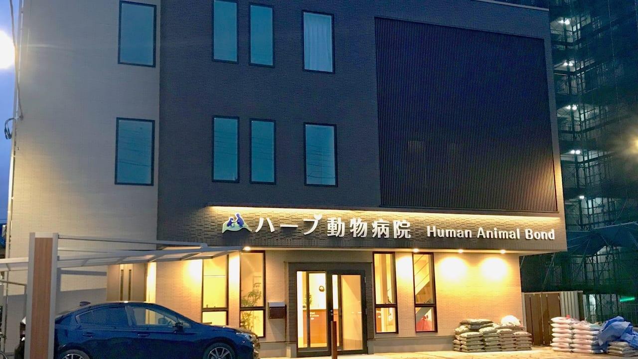 ハーブ動物病院1