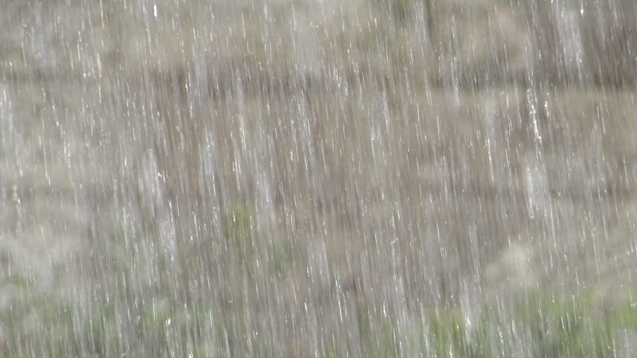 川口市冠水